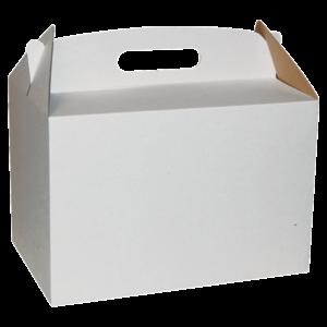 Poklon Kutija BK/e 300*200*200mm