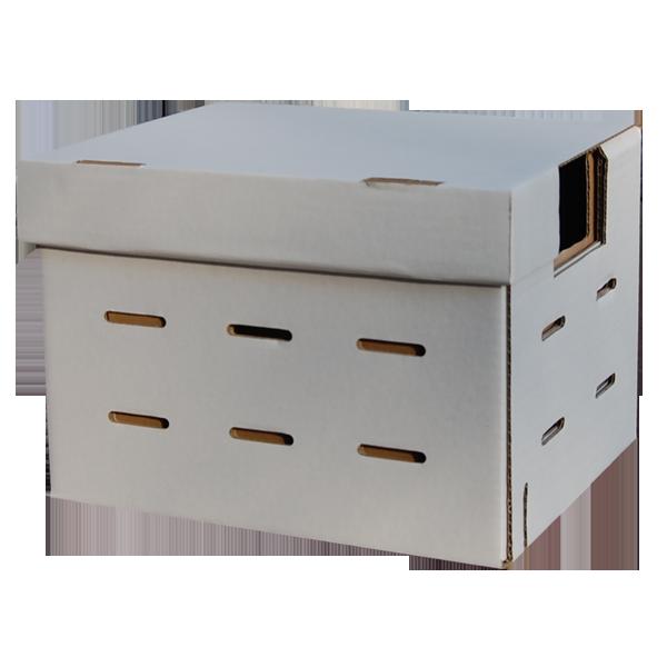 Kutija za bumbare-0